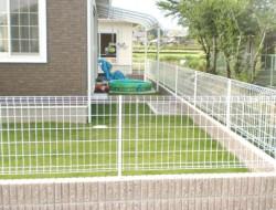 芝生 お庭